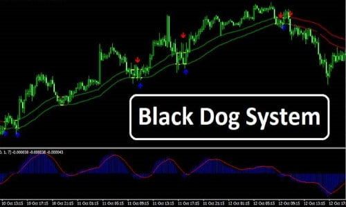 Black Dog Trading System Review