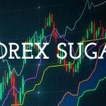 forex sugar