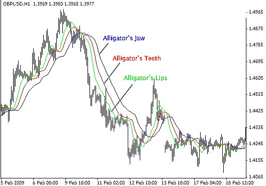 Alligator Indicator signal on chart