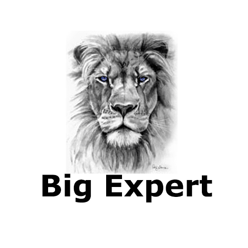 Big Expert Review