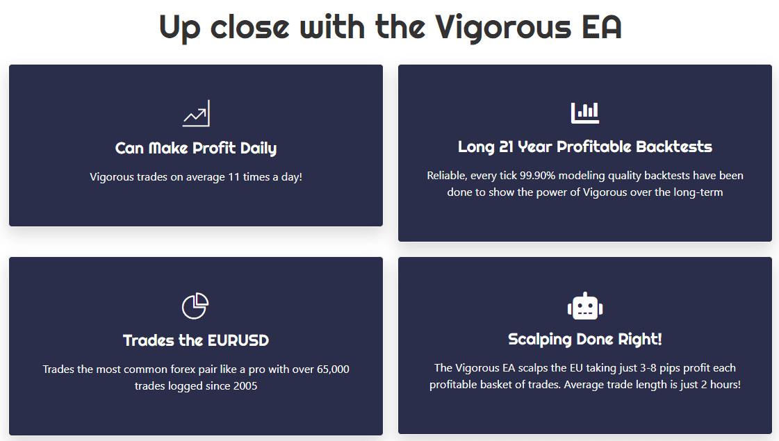 Vigorous EA Product Offering