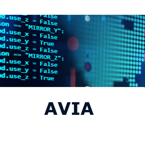 Read more about the article AVIA Review